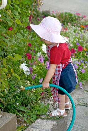 So How Does Your Garden Grow?