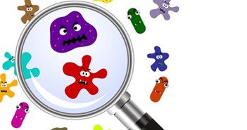 7 Simple Solutions to Banish Germs