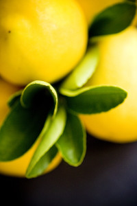 Skincare Tips for Summer Photo #4 (lemons)jpg