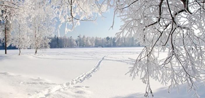 Fight those Winter Blues