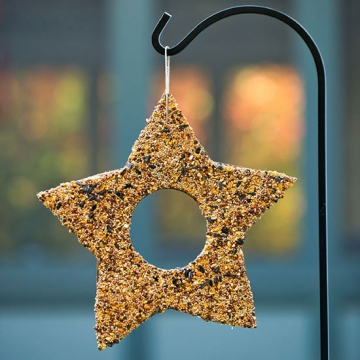 fun winter kids crafts 2 ( star bird feeder)