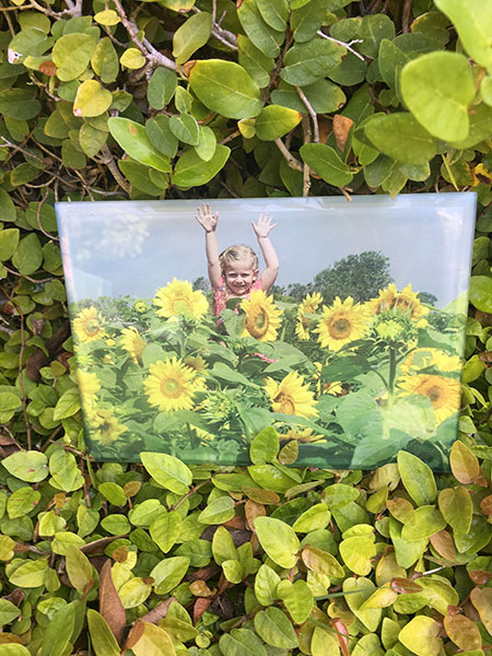 Awesome Memories Little Girl In Sunflowers