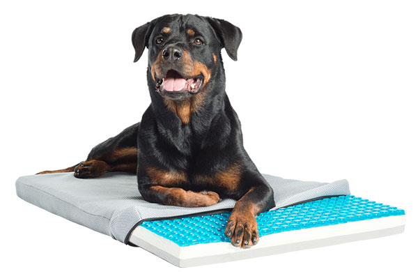 Gel Cell Cooling Pad