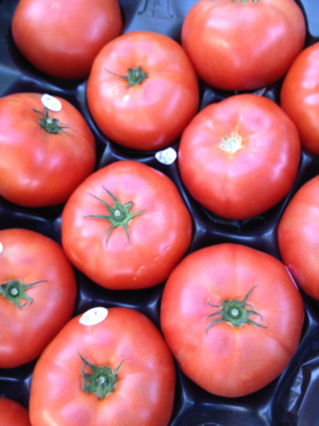 Fresh Tomatoes - Seasonal