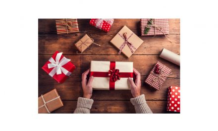 5 Great Gifts for The Family This Holiday Season Our expert picks!