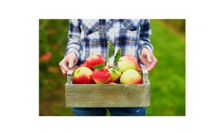5 Healthy Reasons to Eat an Apple Today