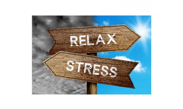 The Best Tips for Avoiding Stress During the Holidays