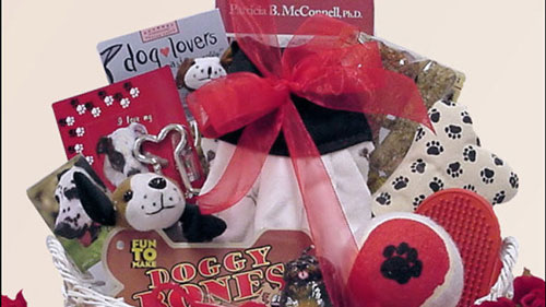 Congrats on Your New Pooch!: Pet Dog Gift Basket
