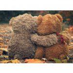 Love & Compassion & Empathy