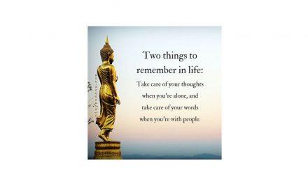 Superb advice!