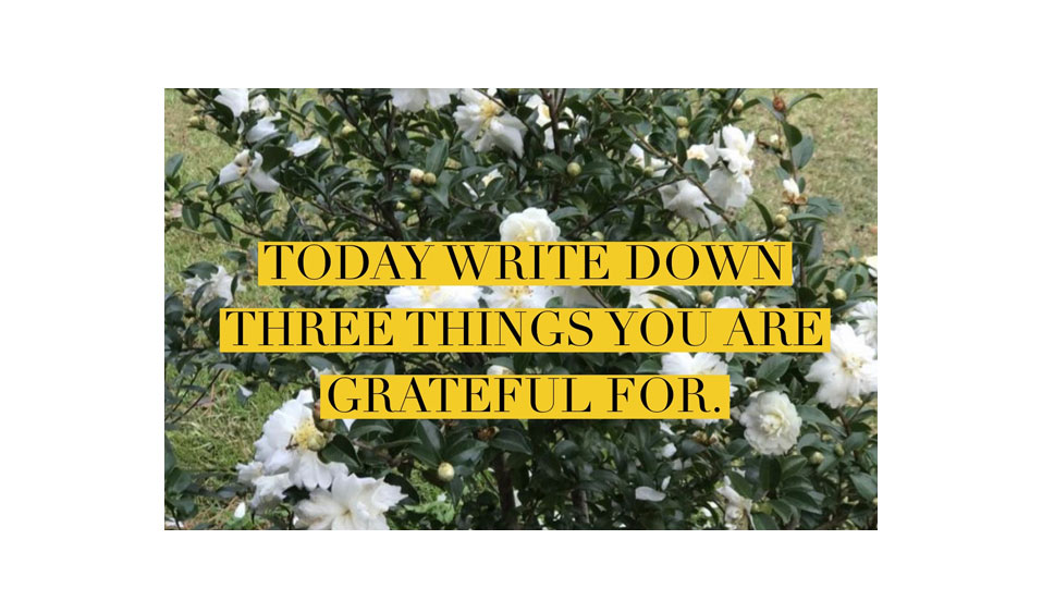 Today Write Down Three Things You Are Grateful For
