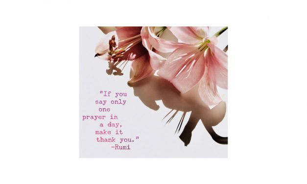 If you say only one prayer in a day, make it thank you