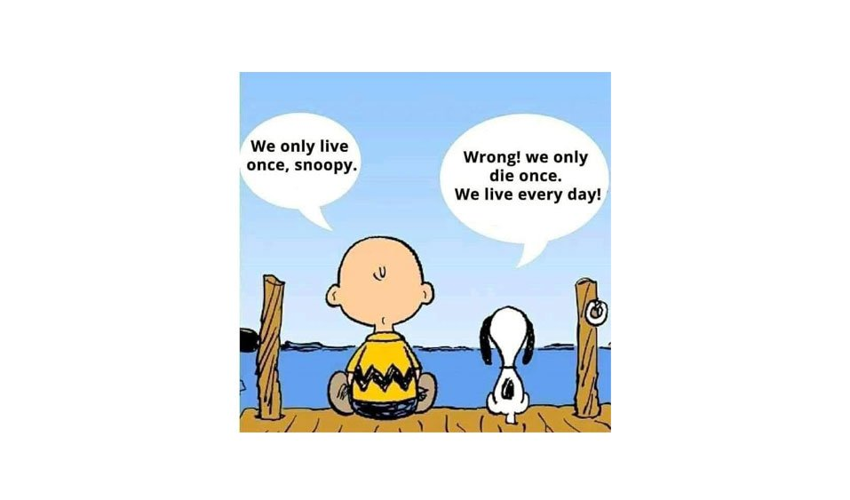 We only live once, snoopy.
