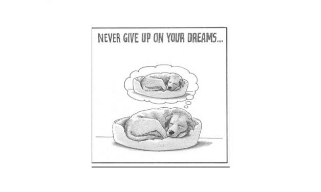 Never give up on your dreams…